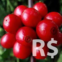 Redução dos Custos de Produção do Café